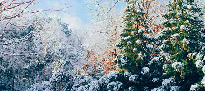 Winter is a wonderful time to enjoy shopping, dining, and the wonderful sights in Doylestown, Bucks County PA